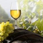 Вино в борьбе с вирусами