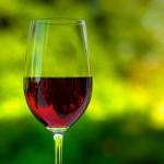 Ароматные и сочные красные вина