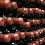 Технология винного производства