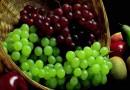 Почему вино делают именно из винограда?