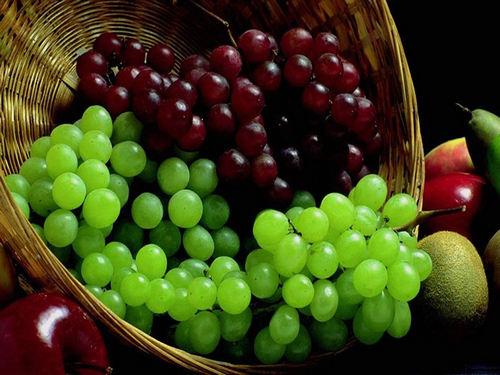 Почему для производства вин применяется именно виноград?