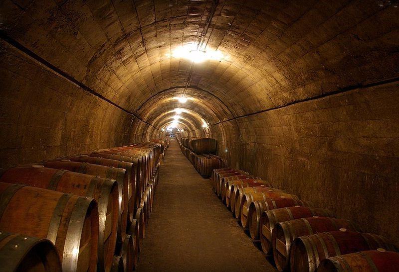 Вина Испании – винодельческие регионы, лучшие испанские вина с названиями, белые и красные, сорта, марки, классификация