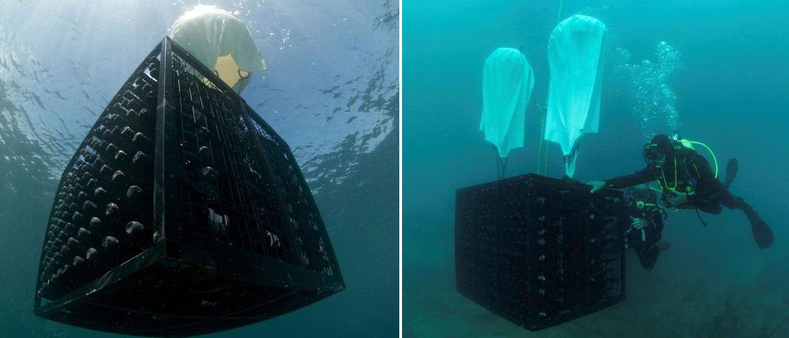 Подводное хранение вина
